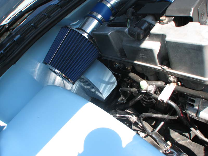 deleting stuff from under the hood | S-10 Forum