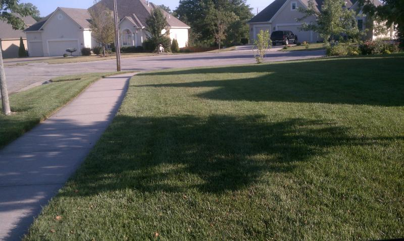 Mowing the grass.-imag0717.jpg